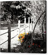 Fence Near The Garden Acrylic Print by Julie Hamilton