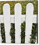 Fence With Hedge Acrylic Print