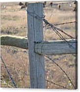Fenced Acrylic Print by Kelly Kitchens