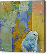 Feng Shui Parakeets Acrylic Print by Michael Creese