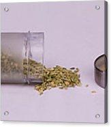 Fennel Seeds Saunf Acrylic Print