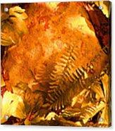Fern 3 Acrylic Print