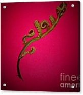 Fern Frond On Red Acrylic Print
