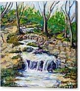 Ferndell Creek Noon  Acrylic Print