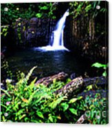 Ferns Flowers And Waterfall Acrylic Print