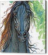 Ferryt Polish Black Arabian Horse Acrylic Print