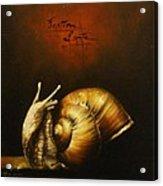 Festina Lente Acrylic Print
