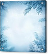 Festive Winter Background Acrylic Print