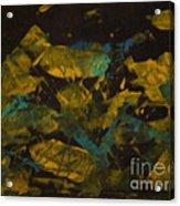Field At Night Acrylic Print