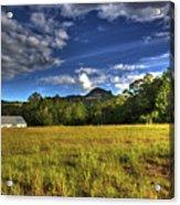 Field Bathed In Sunshine Acrylic Print