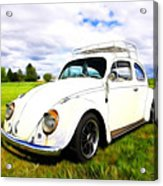 Field Bug Acrylic Print