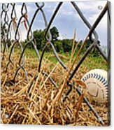 Field Of Dreams Acrylic Print by Jason Politte