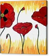 Field Of Fire Acrylic Print