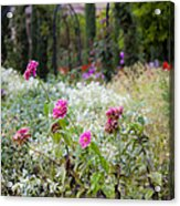 Field Of Flowers On A Rainy Day Acrylic Print