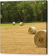 Field Of Freshly Baled Round Hay Bales Acrylic Print