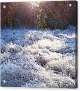 Field Of Frost Acrylic Print