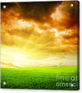 Field Of Grass Acrylic Print by Boon Mee