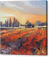 Field Of Light Oil Painting Acrylic Print