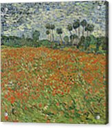 Field Of Poppies, Auvers-sur-oise, 1890 Acrylic Print
