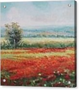 Field Of Poppies Acrylic Print