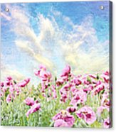 Field Of Poppies Stillliefe Acrylic Print