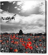 Field Of Red Acrylic Print
