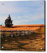 Field Of Shadows Acrylic Print