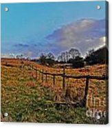 Field Of The Cotswold Acrylic Print