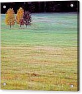 Field With Four Trees Acrylic Print
