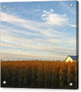 Fields Of Gold - Digital Painting Effect Acrylic Print