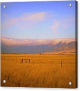 Fields Of Grain Acrylic Print