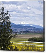 Fields Of Spring Acrylic Print