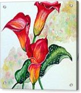 Fiery Callas Acrylic Print