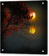 Fiery Fall... Acrylic Print