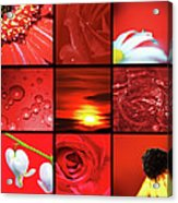 Fiery Red Acrylic Print