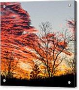 Fiery Sundown Acrylic Print