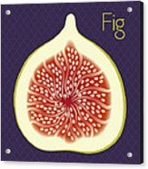Fig Acrylic Print by Christy Beckwith