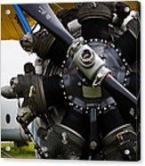Boeing-stearman Model 75 Kaydet Acrylic Print