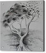 Figtree The Strength Acrylic Print