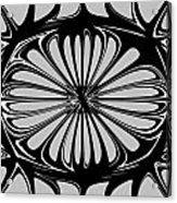 Figure 140509-1 Acrylic Print