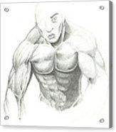 Figure Sketched Acrylic Print