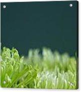 Fiji Green 5 Acrylic Print