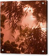 Film Homage Joseph Cornell Rose Hobart 1936 Summer Monsoon Storm In My Front Yard Casa Grande Az '05 Acrylic Print