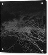 Film Homage Orson Welles Macbeth 1948 View From My Back Yard Casa Grande Arizona 2005-2008 Acrylic Print
