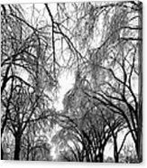 Film Noir Cinematographer Burnett Guffey Glenn Ford Framed 1947  2 Summit Avenue St. Paul Mn 1966 Acrylic Print