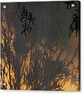 Film Noir Edward G. Robinson Richard Conte House Of Strangers 1949 Casa Grande Arizona 2004 Acrylic Print