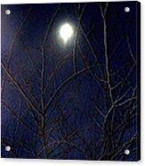 Film Noir Joseph H Lewis So Dark The Night 1946 Moon Trees Casa Grande Arizona 2000 Acrylic Print