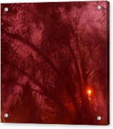 Film Noir Orson Welles Joseph Cotten Journey Into Fear 1942 Summer Storm Trees Casa Grande 2004 Acrylic Print