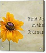 Find Joy Acrylic Print