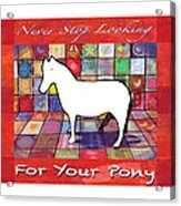 Find The Pony Poster Acrylic Print